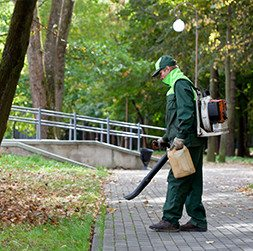 Evergreen Building Maintenance | Commercial Cleaning & Janitorial Services | Landscaping